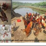 Animal Husbandry and Veterinary dept says consumption of poultry products is safe