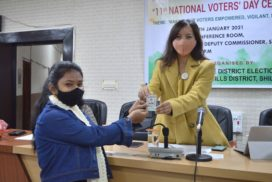 National Voters Day is to remind citizens of their rights as voters