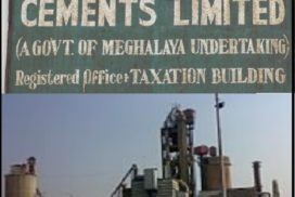 Govt to go for JV to revive MCCL