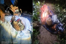 Police recovers IEDs from West Garo Hills